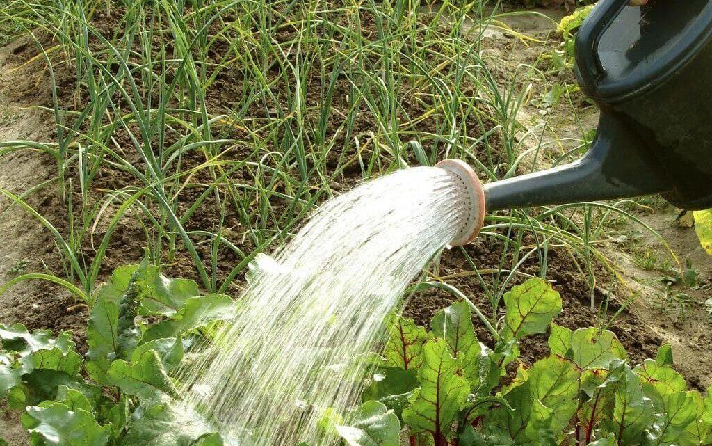 ГУП ДНР «ВОДА ДОНБАССА» призывает абонентов будьте более ответственны к потреблению воды